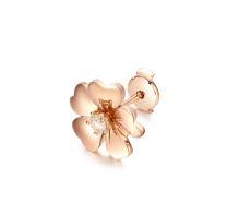 CRD克徕帝Secret Garden单瓣玫瑰 打造专属你的爱情密语